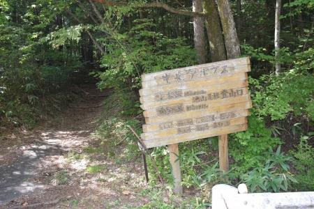 113登山口