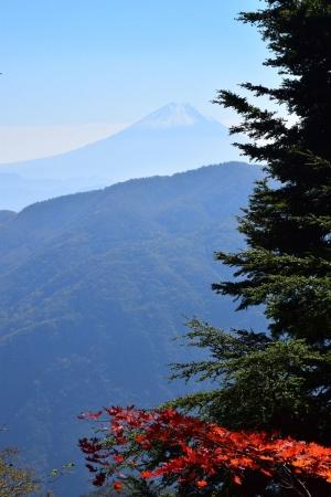 11山道・富士山