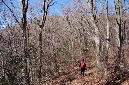 19ハイキングコース