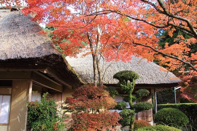 20131123仁比山神社0023
