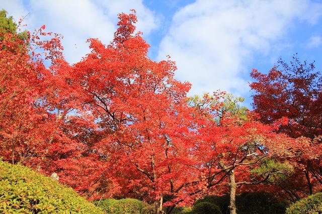 20131123仁比山神社0014