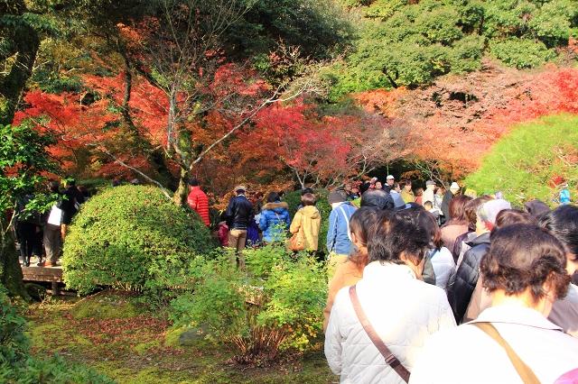 20131123仁比山神社0008