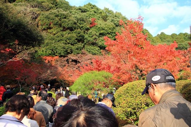 20131123仁比山神社0007