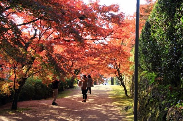 20131123仁比山神社0056