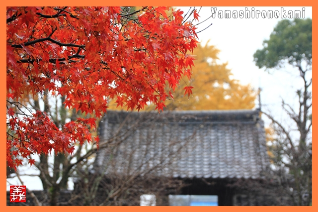 s-20131201観音寺0077
