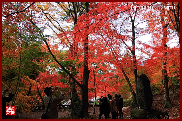 s-20131123仁比山神社0097