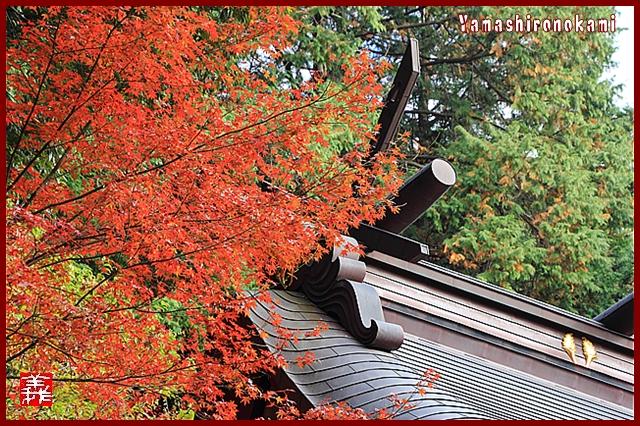 s-20131123仁比山神社0093