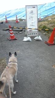 地震0000