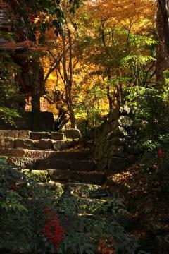 柞原神社8