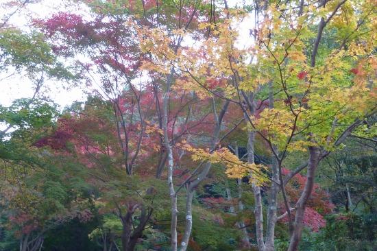 小木津山3