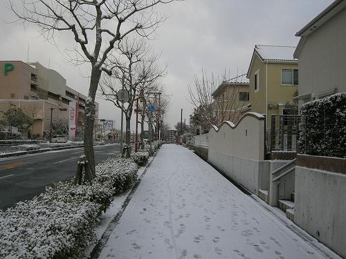 s-DSCN6140.jpg