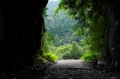 矢の川峠第3?トンネル