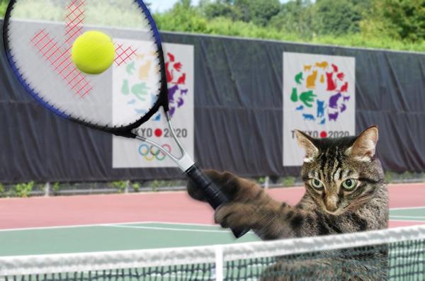 小鉄テニス