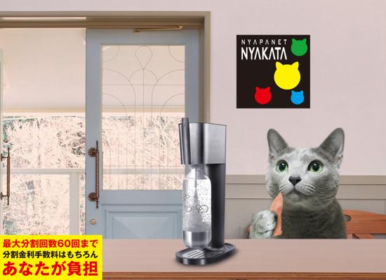 ニャパネットソーダメーカー11