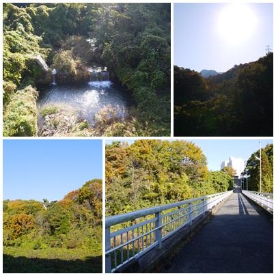 20121119風景