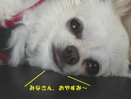 bP1080061.jpg