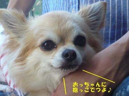 bP1080147.jpg
