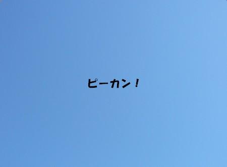 bP1080171.jpg
