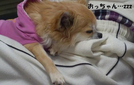 blogDSC_0104.jpg