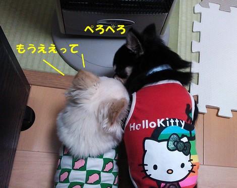 blogDSC_0974.jpg