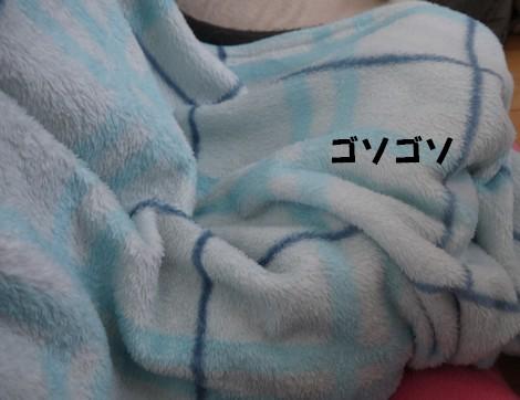 gfP1020024.jpg
