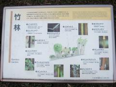 higashigyoen141206-109.jpg