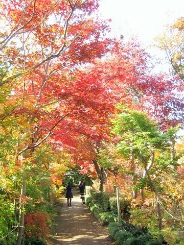 kobayashi141123-103.jpg