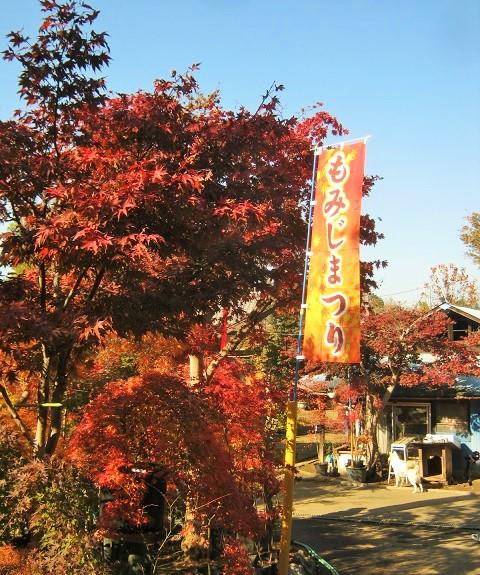 kobayashi141123-111.jpg