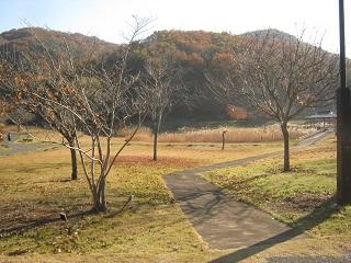 mikamoyama131201-207.jpg