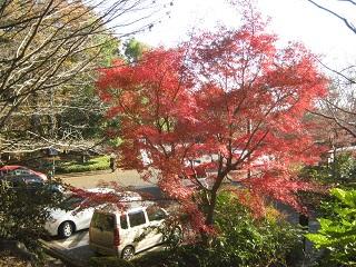 mikamoyama131201-210.jpg