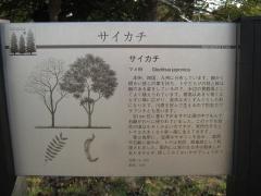 mizumoto131208-109.jpg