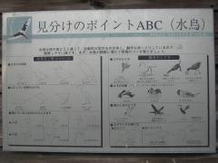 mizumoto131208-111.jpg