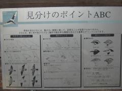 mizumoto131208-112.jpg