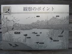 mizumoto131208-113.jpg