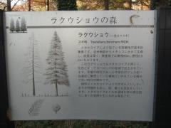 mizumoto131208-115.jpg