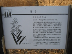 mizumoto131208-117.jpg