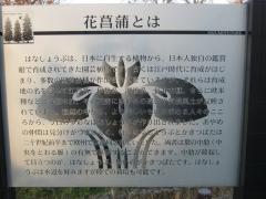 mizumoto131208-120.jpg
