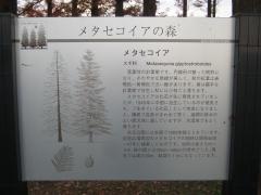 mizumoto131208-122.jpg