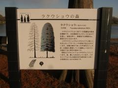 mizumoto141214-109.jpg