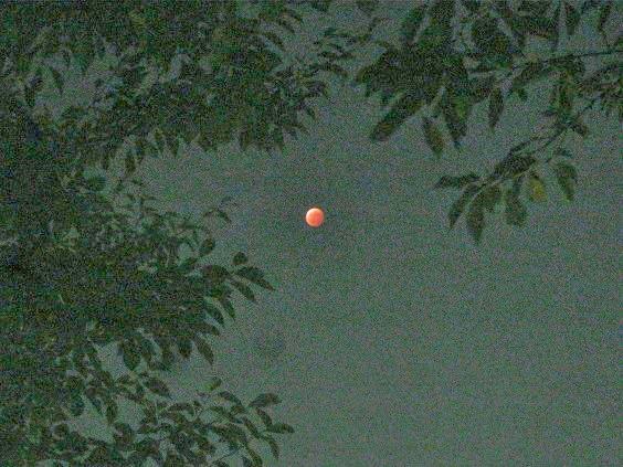 moon141008-101.jpg