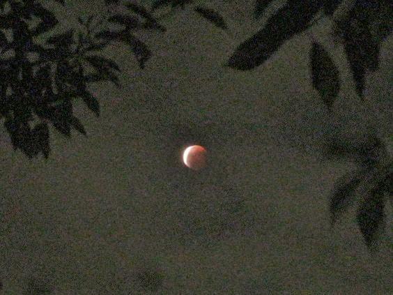 moon141008-104.jpg