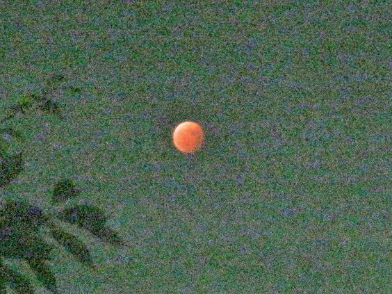 moon141008-107.jpg