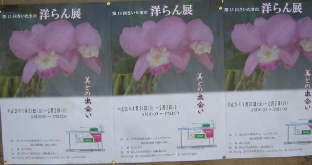 oosaki131215-103.jpg