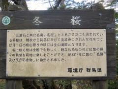 sakurayama141115-112.jpg