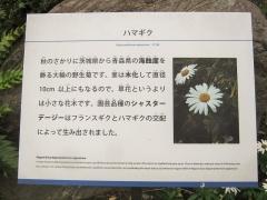 tukuba141103-117.jpg