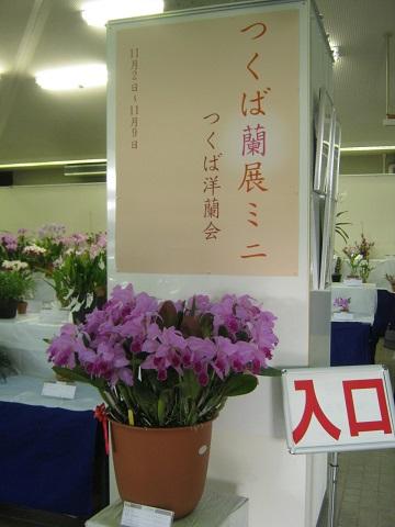 tukuba141103-120.jpg