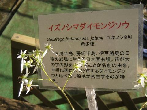 tukuba141103-130.jpg