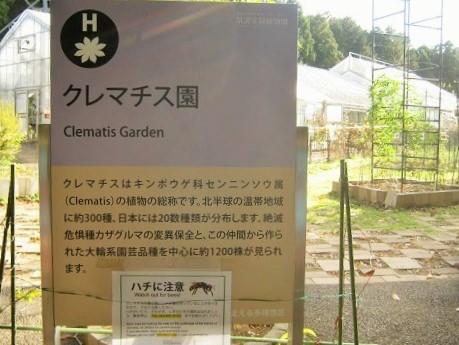 tukuba141103-134.jpg