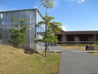出雲博物館