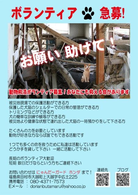 2011051607224797c.jpg